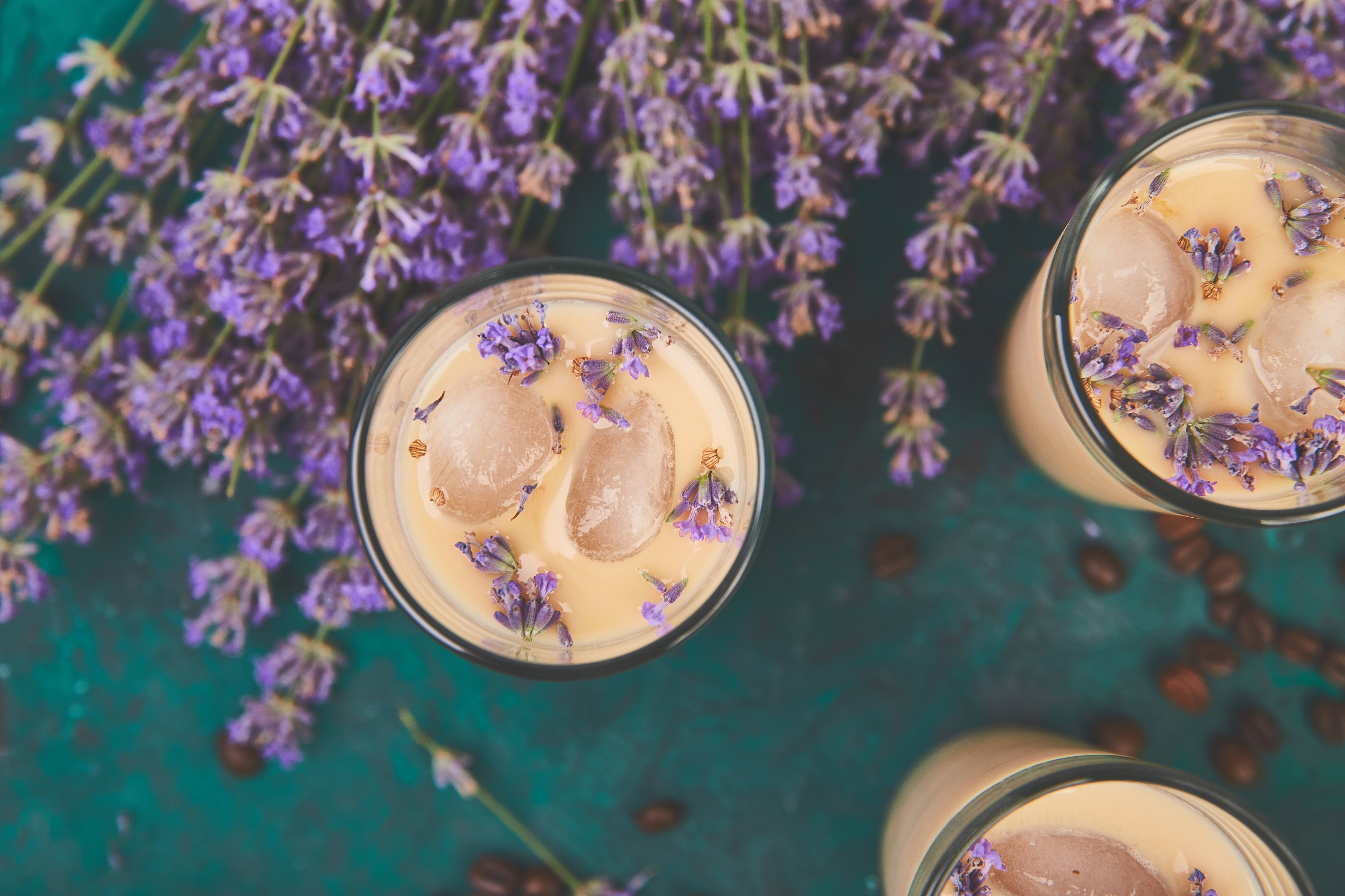 Summer drink iced coffee with lavender in glass and coffee beans on green background. Good Morning concept. Baeutiful ice coffee.